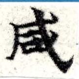HNG008-0269
