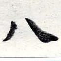 HNG016-0404