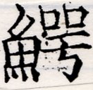 HNG042-1124b